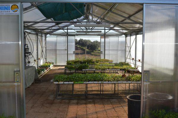 inaugurazione serra cooperativa garibaldi roma3