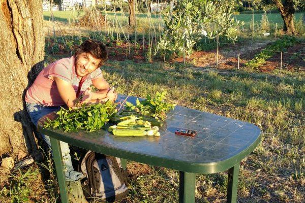 inclusione sociale cooperativa garibaldi roma 2